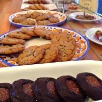 bluebird-bakers
