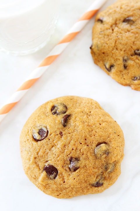 pumpkin cookie recipes! You can never have too many pumpkin cookie