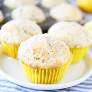 Lemon-Poppy-Seed-Muffins-6
