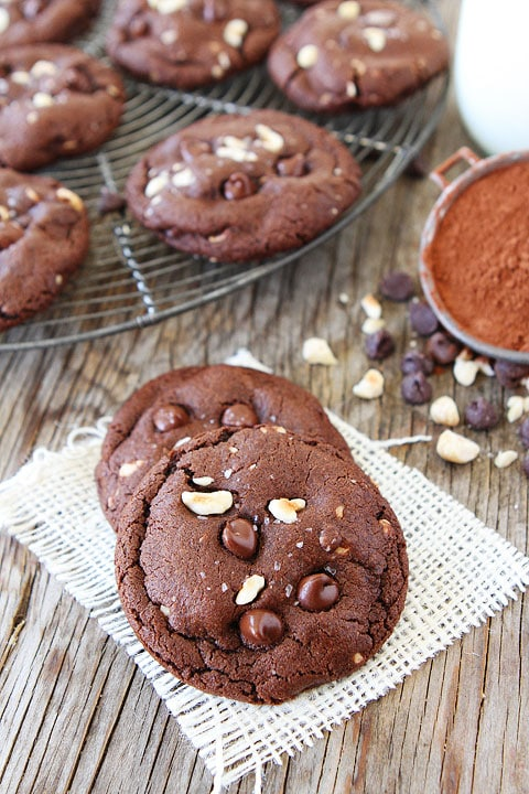 Double Chocolate Hazelnut Cookies with Sea Salt-these cookies are ...