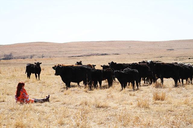 Pioneer-Woman-Ranch-8