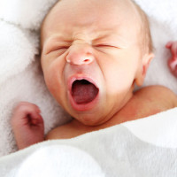 Baby-Maxwell-3