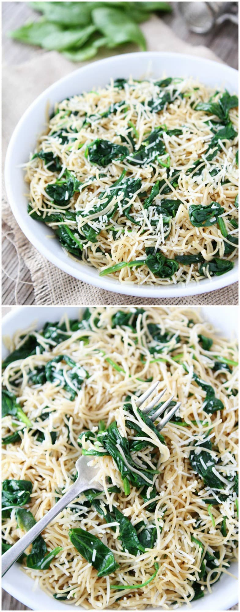 pasta spinach olive oil cheese garlic butter pasta garlic butter pasta ...