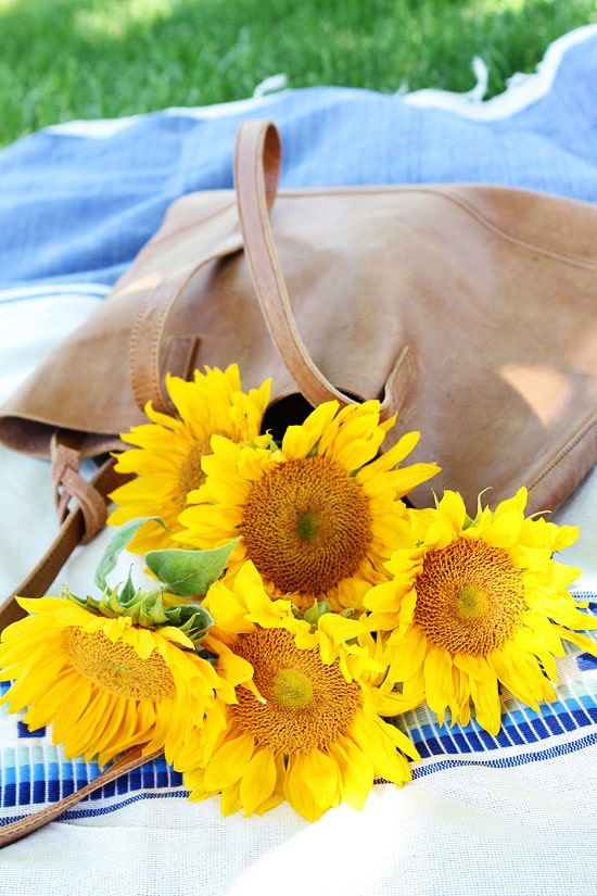 Summer Picnic Tips and Recipes
