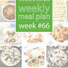 meal-plan-sixtysix (1)